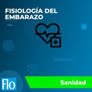 FISIOLOGÍA DEL EMBARAZO Flo Formación